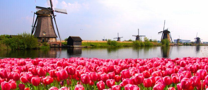 Wat te doen in Noord-Holland